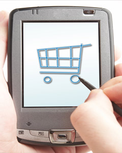 Mastering the Challenge of Finding the Most Suitable E-Shop System