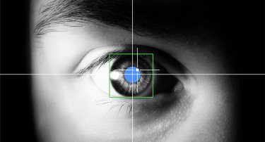 Eye-tracking study reveals success factors for video advertising